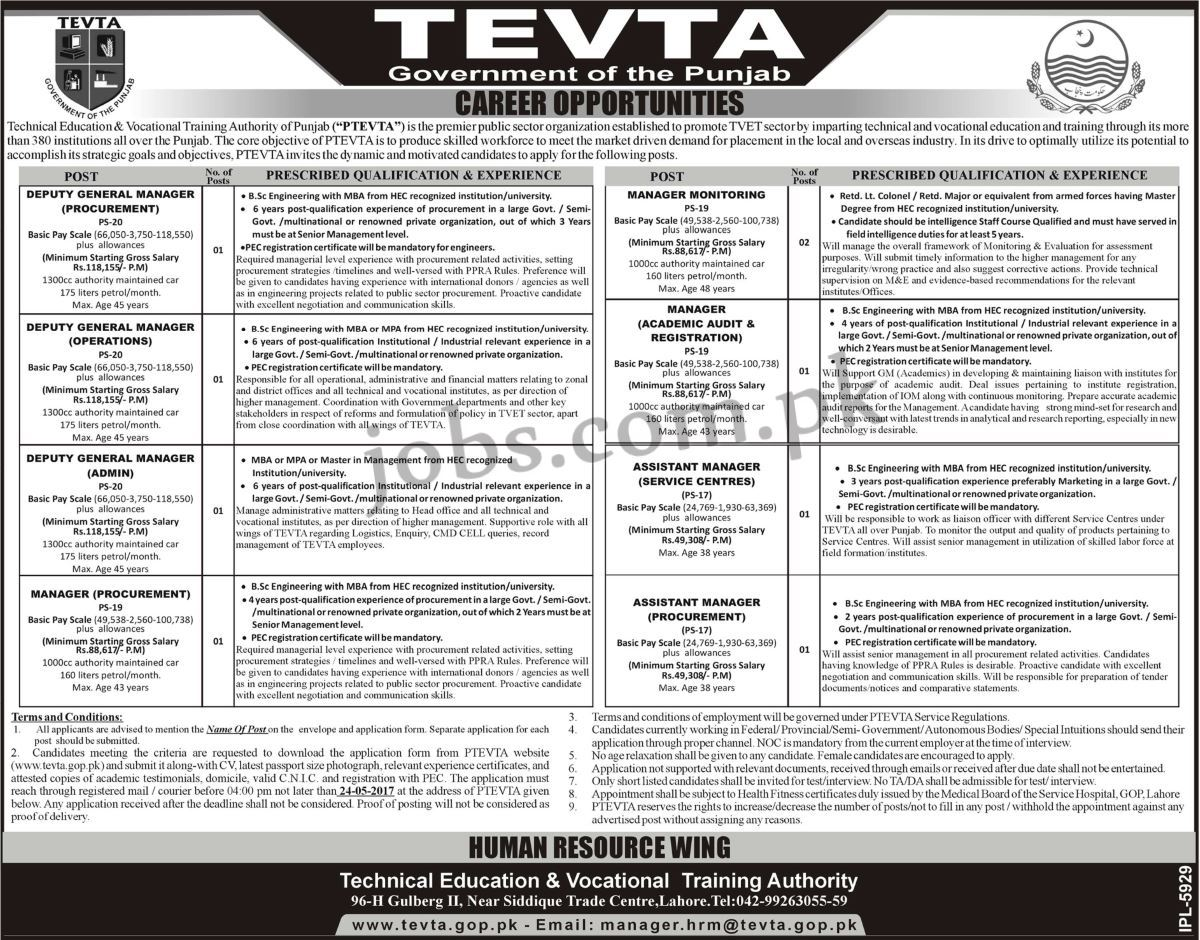 an essay submitted by a candidate for a university degree