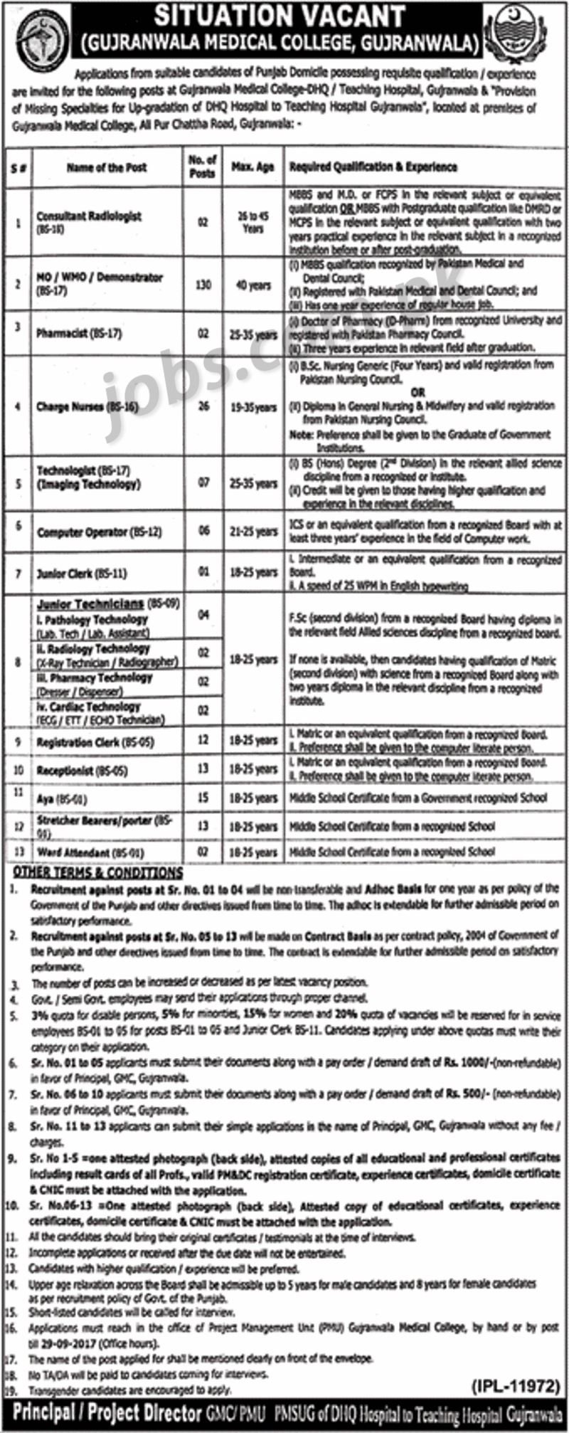 gujranwala medical college jobs 2017 for 239  medical  it