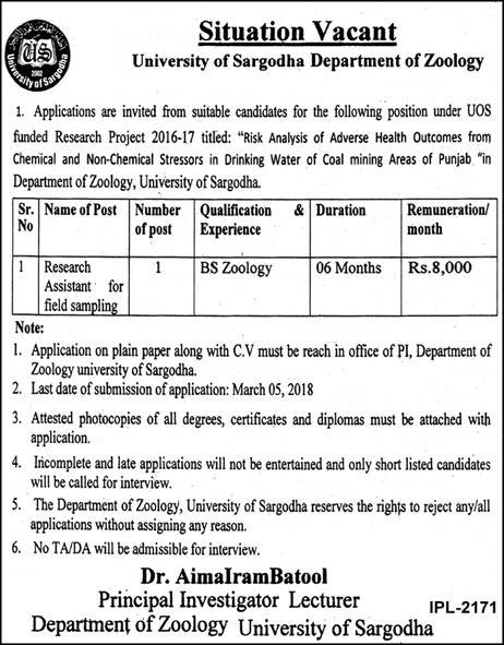 University Of Sargodha Jobs  For Research Assistant On