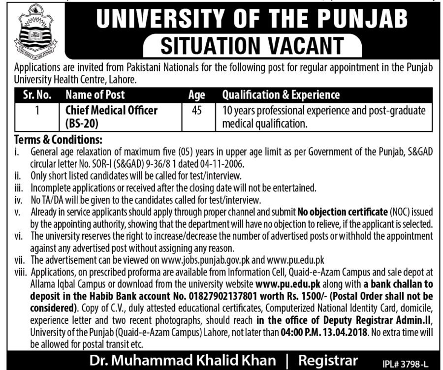 University Of The Punjab Jobs  For Chief Medical Officer On