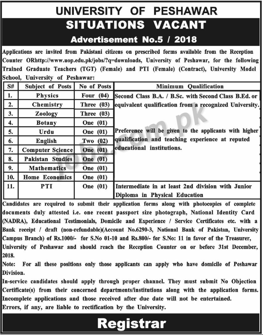 Govt Jobs For Teacher 2019 Govt School  Sarkari Naukri